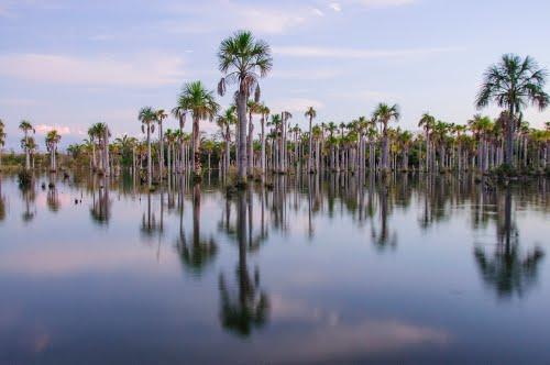 Photo of Lagoa das Araras in the TripHappy travel guide