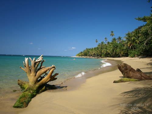 Featured medium photo of Playa Cocles on TripHappy's travel guide