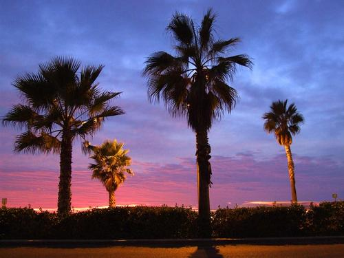 Featured medium photo of Carlsbad on TripHappy's travel guide