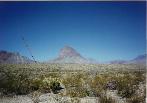 Photo of Big Bend National Park in the TripHappy travel guide