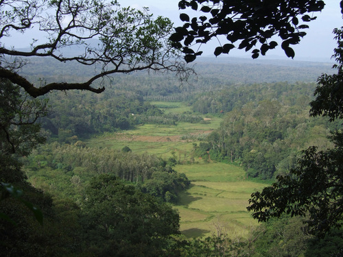 Photo of Madikeri in the TripHappy travel guide