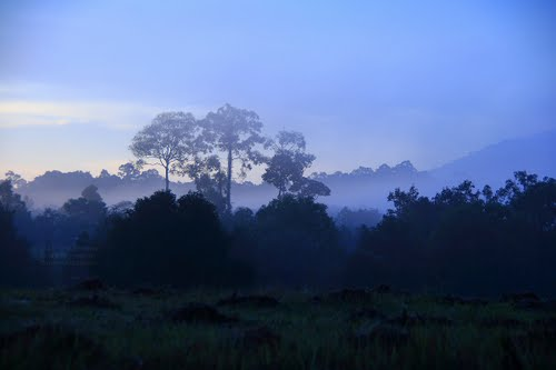 Featured medium photo of KhaoYai National Park on TripHappy's travel guide