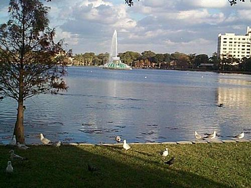 Featured medium photo of Orlando on TripHappy's travel guide