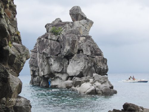 Featured medium photo of Apo Island on TripHappy's travel guide