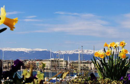 Featured medium photo of Geneva on TripHappy's travel guide