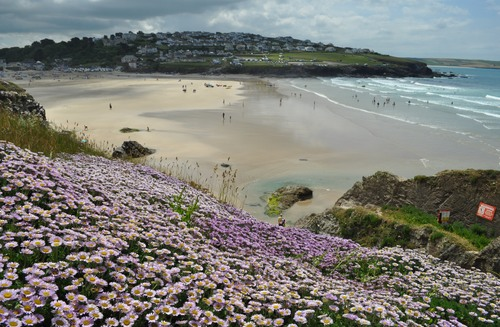 Photo of Padstow in the TripHappy travel guide