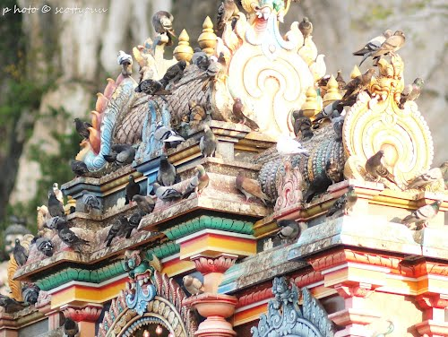 Featured medium photo of Batu Caves on TripHappy's travel guide