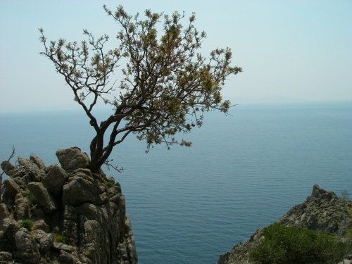 Photo of Samothrace in the TripHappy travel guide