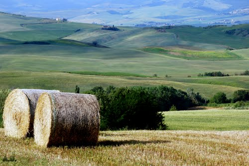 Photo of Pienza in the TripHappy travel guide