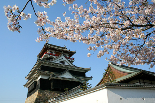Photo of Nagoya in the TripHappy travel guide