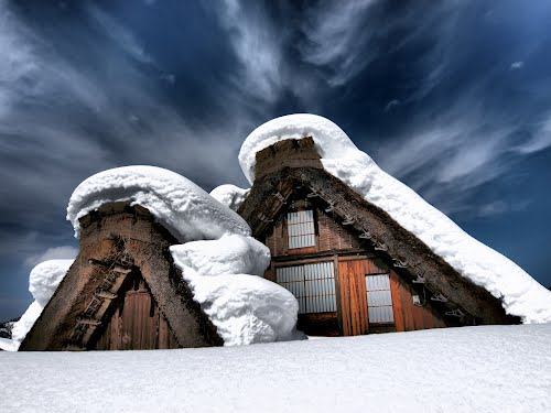 Featured medium photo of Shirakawa on TripHappy's travel guide