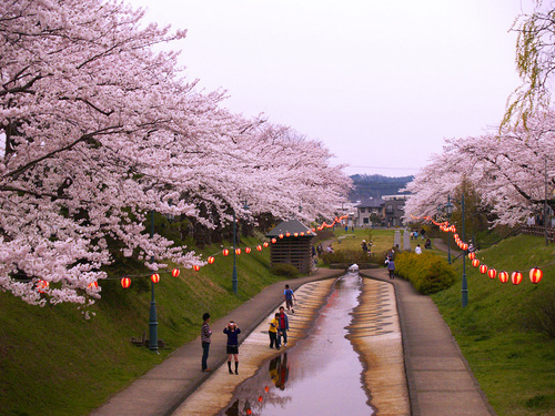 Photo of Akita Prefecture in the TripHappy travel guide