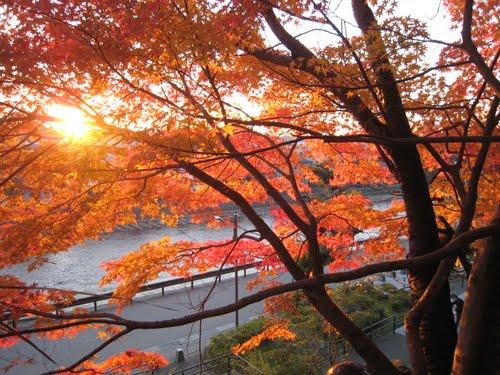 Featured medium photo of Kanazawa Castle Park on TripHappy's travel guide