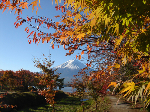 Featured medium photo of Fuji Visitor Center on TripHappy's travel guide