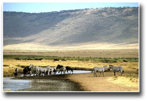 Photo of Ngorongoro Crater in the TripHappy travel guide