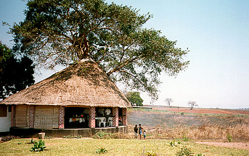 Photo of Chimoio in the TripHappy travel guide
