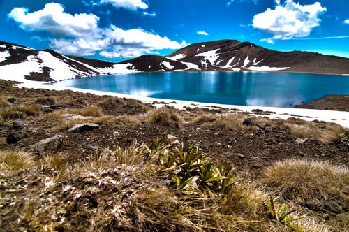 Photo of Whakapapa in the TripHappy travel guide