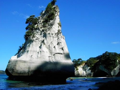Featured medium photo of Te Whanganui-A-Hei Marine Reserve on TripHappy's travel guide