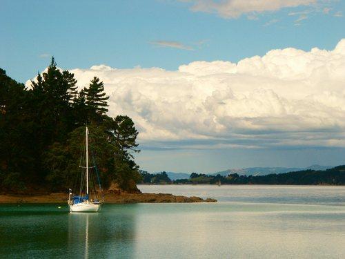 Featured medium photo of Waiheke Island on TripHappy's travel guide