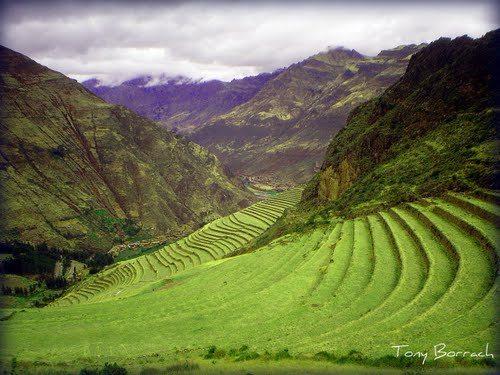Featured medium photo of Pisac on TripHappy's travel guide