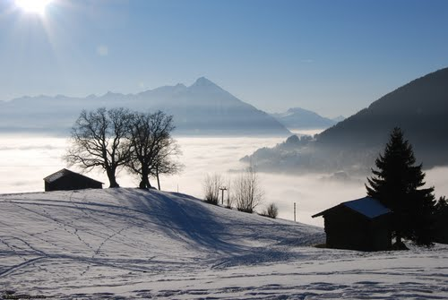 Featured medium photo of Interlaken on TripHappy's travel guide