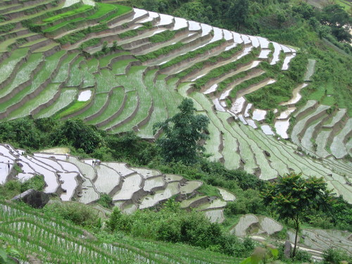 Featured medium photo of Sa Pa on TripHappy's travel guide