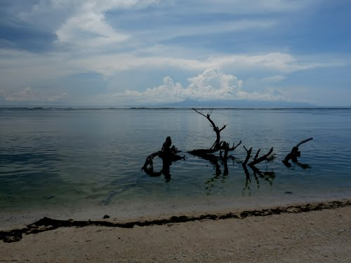 Featured medium photo of Gili Trawangan on TripHappy's travel guide