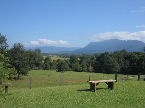 Featured medium photo of Bellingen on TripHappy's travel guide
