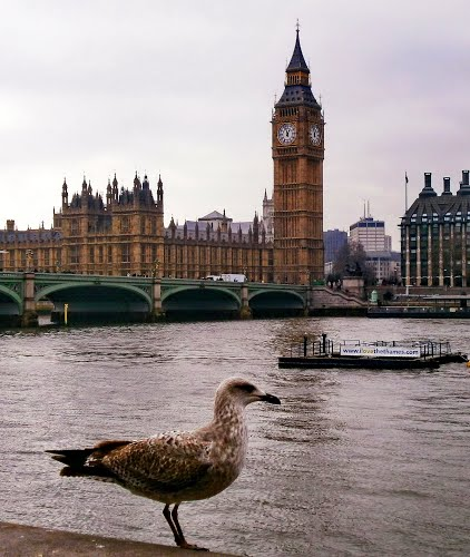 Photo of London in the TripHappy travel guide