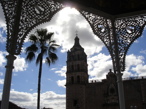 Photo of Alamos in the TripHappy travel guide