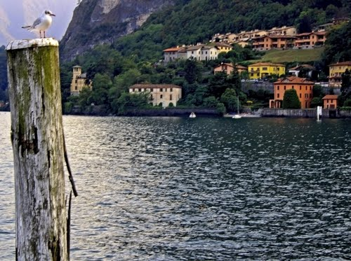 Photo of Varenna in the TripHappy travel guide