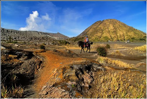 Photo of Mount Bromo in the TripHappy travel guide
