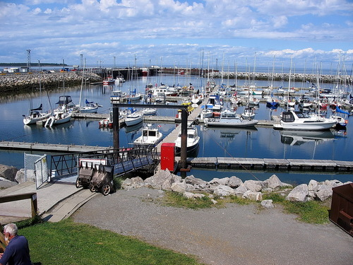 Featured medium photo of Rimouski on TripHappy's travel guide