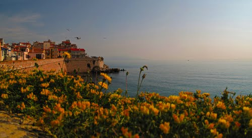 Photo of Antibes in the TripHappy travel guide