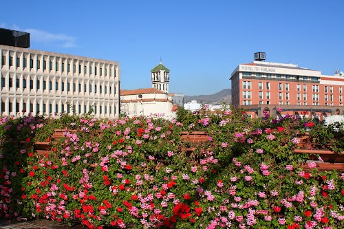 Photo of Málaga in the TripHappy travel guide