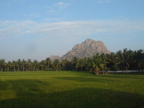 Featured medium photo of Nagercoil on TripHappy's travel guide