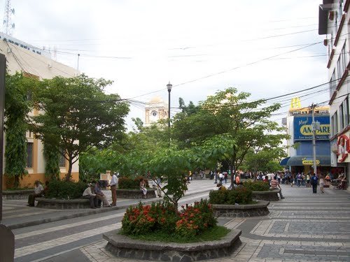 Photo of San Pedro Sula in the TripHappy travel guide