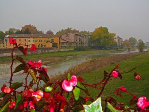 Photo of Parma in the TripHappy travel guide