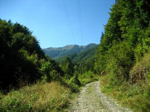 Featured medium photo of Kozyata Stena on TripHappy's travel guide