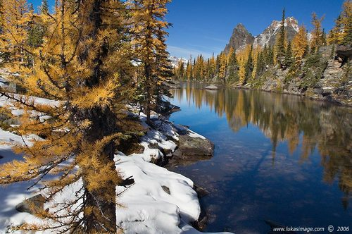 Photo of Lake O'Hara in the TripHappy travel guide