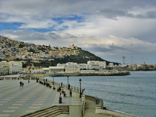 Featured medium photo of El Mouradia on TripHappy's travel guide