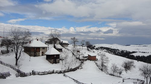Photo of Zlatibor in the TripHappy travel guide