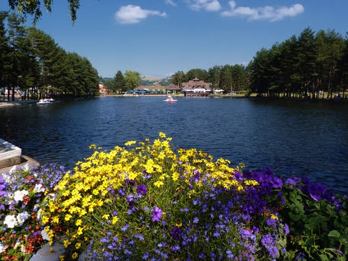 Featured medium photo of Zlatibor on TripHappy's travel guide