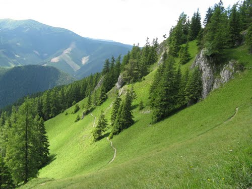 Photo of Demänovská Dolina in the TripHappy travel guide