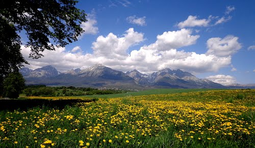 Photo of Vysoké Tatry in the TripHappy travel guide