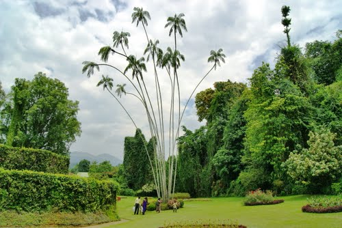 Photo of Kandy in the TripHappy travel guide