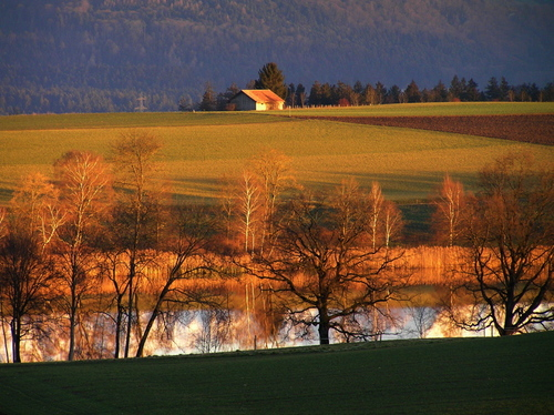 Featured medium photo of Kehrsatz on TripHappy's travel guide