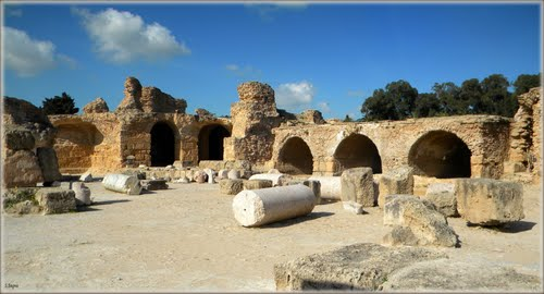 Photo of Carthage in the TripHappy travel guide