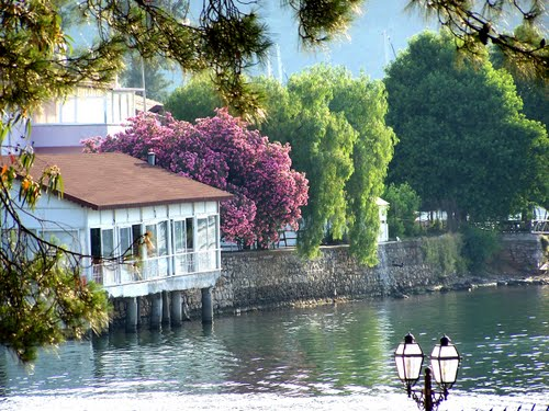 Photo of Fethiye in the TripHappy travel guide