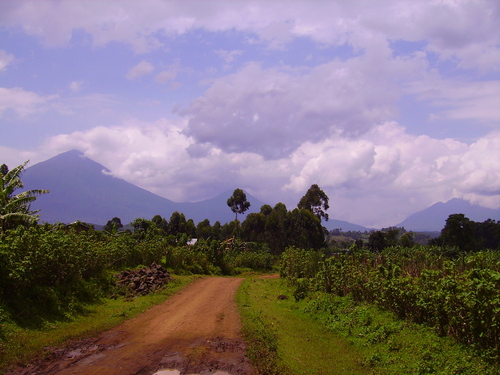 Photo of Kisoro in the TripHappy travel guide